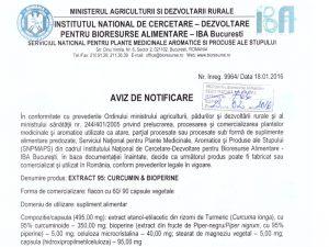 Omologare Curcumin95&Bioperine