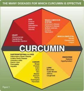 Curcumin-Health-Chart_grande