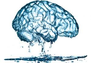Water-Brain-300x206